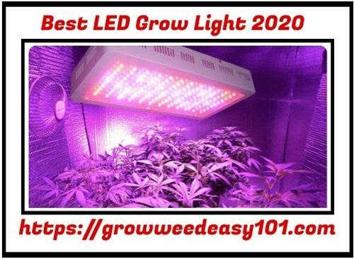 Best Led Grow Lights 2020.Best Led Grow Lights 2020